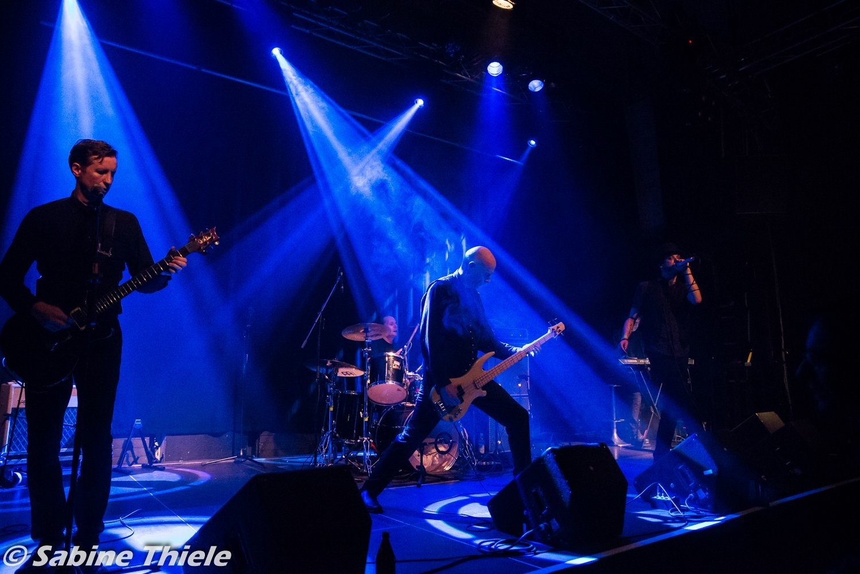 Lemora live in Munich